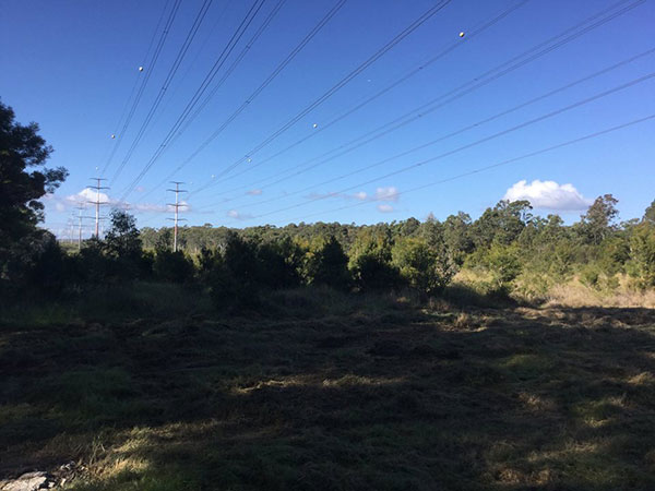 Advanced-Clearing-Excavation-before-clearning-powerlines-Sydney