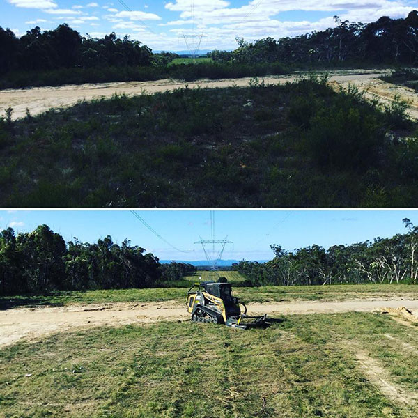 Advanced-Clearing-Excavation-skid-steer-clearing-Sydney