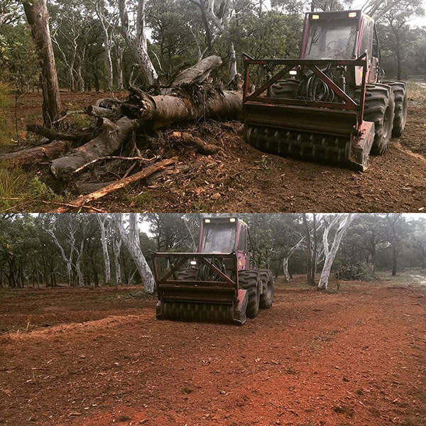 Advanced-Clearing-Excavation-tree-clearing-Sydney