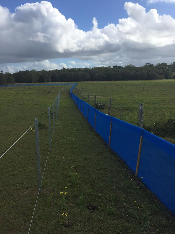 Advanced-Group-Environmental-Protection-Products-Frog-Fencing-Tall-frog-fence-frog-fencing