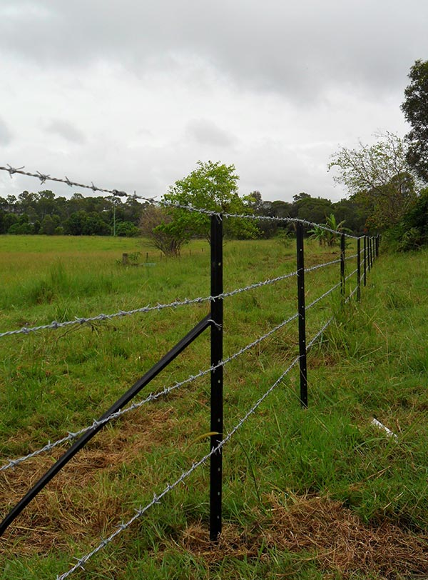 Advanced-Group-Environmental-Protection-Products-Rural-Fencing-Farm-Fence-1-rural-fencing