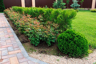 Advanced-Group-Landscape-hero-commercial-landscaping