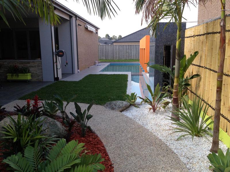 Backyard garden and pool