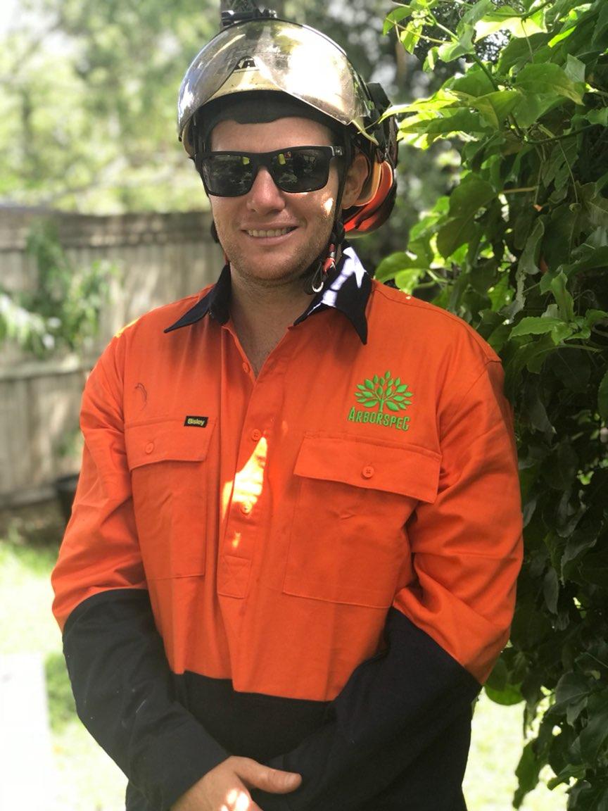 Arborspec - Arborist and Tree Climber - Brisbane