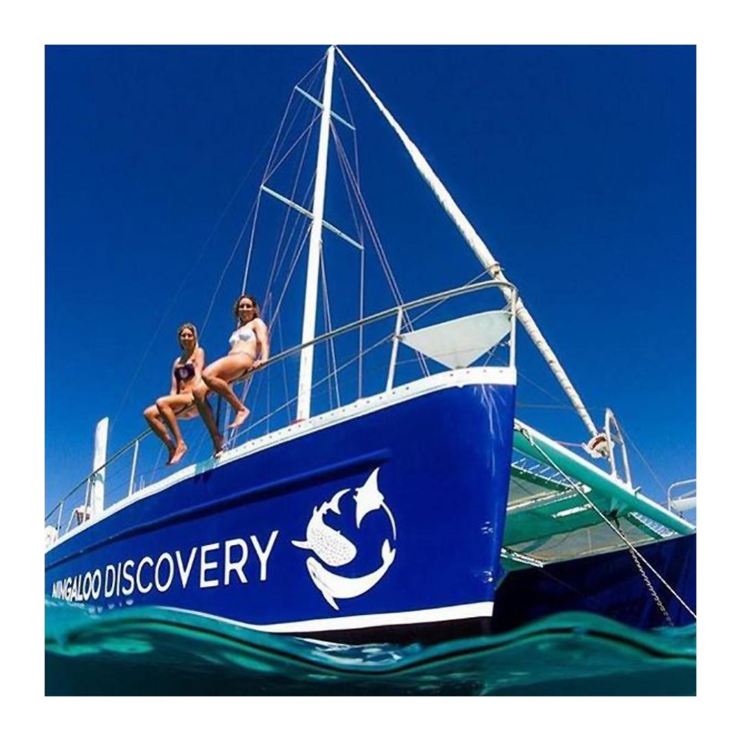 Ningaloo Discovery catamaran
