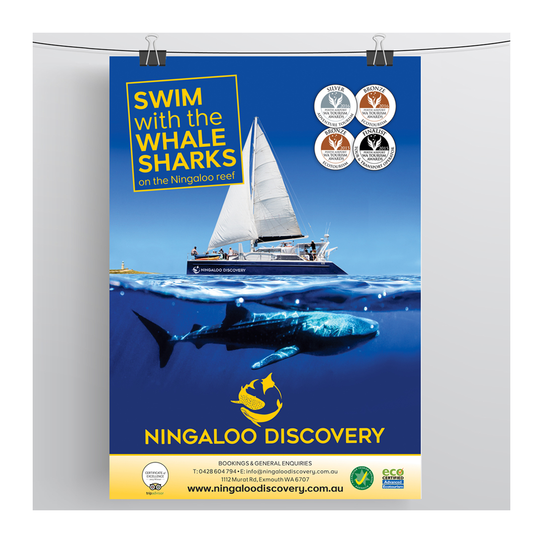 "Ningaloo Discovery ""Swim with the Whale Sharks"" poster"