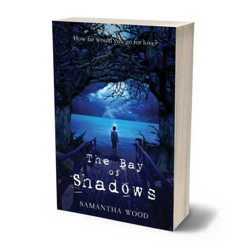 The Bay of Shadows, a novel by Samantha Wood
