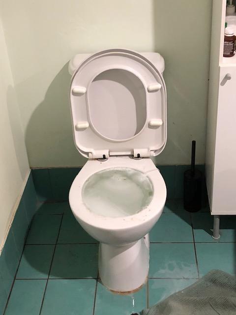 Blocked Toilet North Lakes