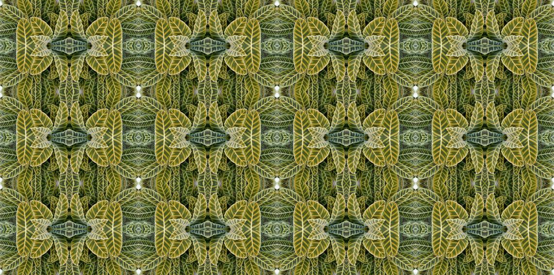 Styliano Tree Designs In Glass Wallpaper Fabric