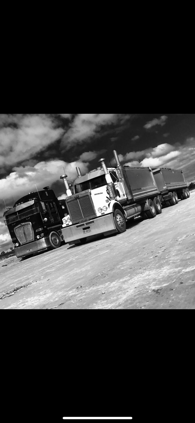 Load and Go truck and dog fleet