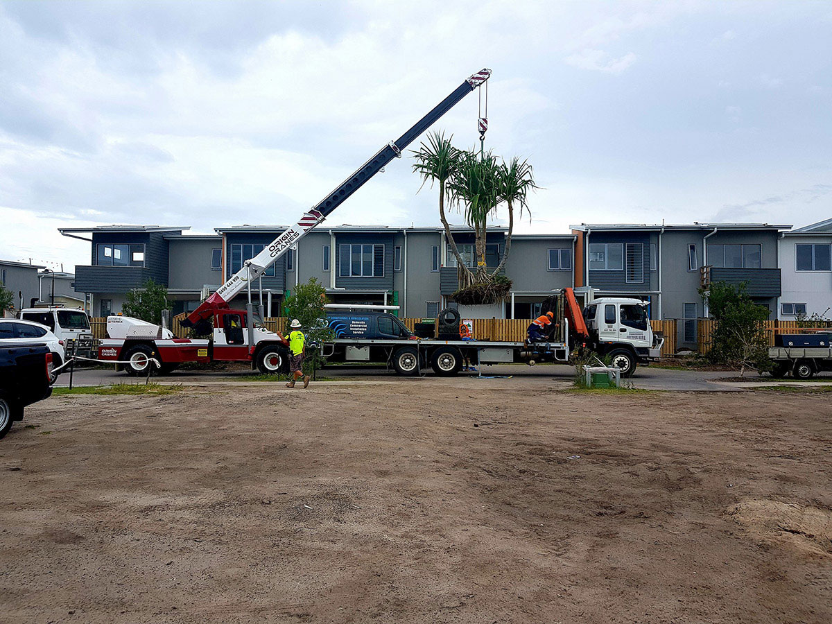 Origin-Cranes-fleet-domestic-home-build-Sunshine-Coast