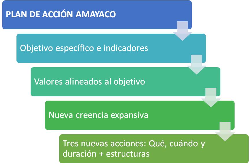 plan de acción amayaco