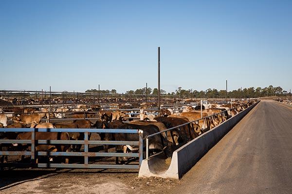 rsa-contractors-agricultural