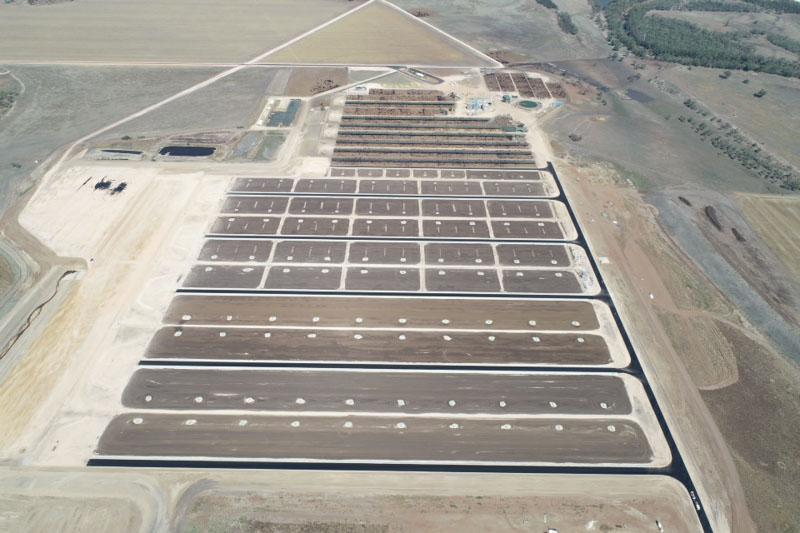 Second stage feedlot