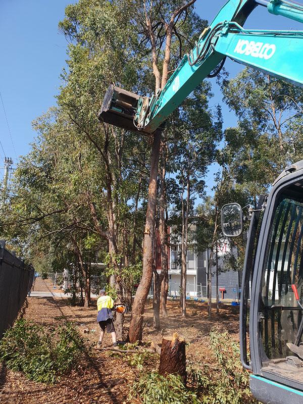 Relient-Civil-Excavator-Bulk-Earthworks-Brisbane