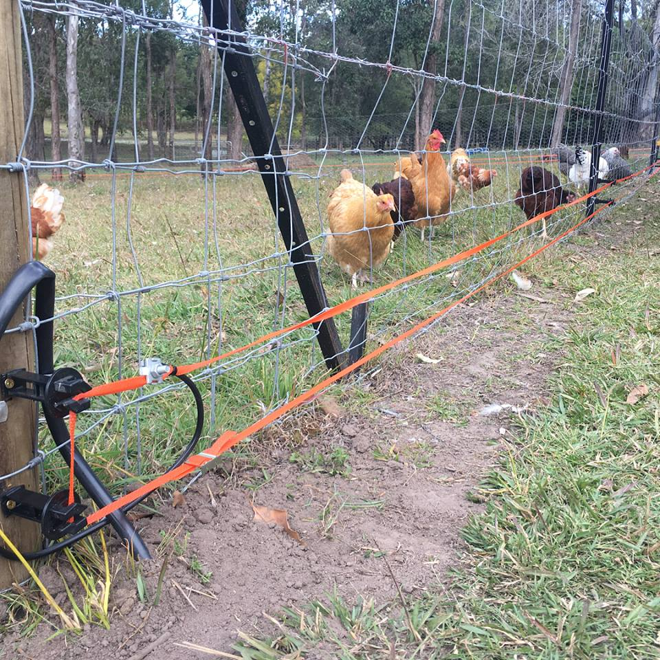 SENS Electric Fence