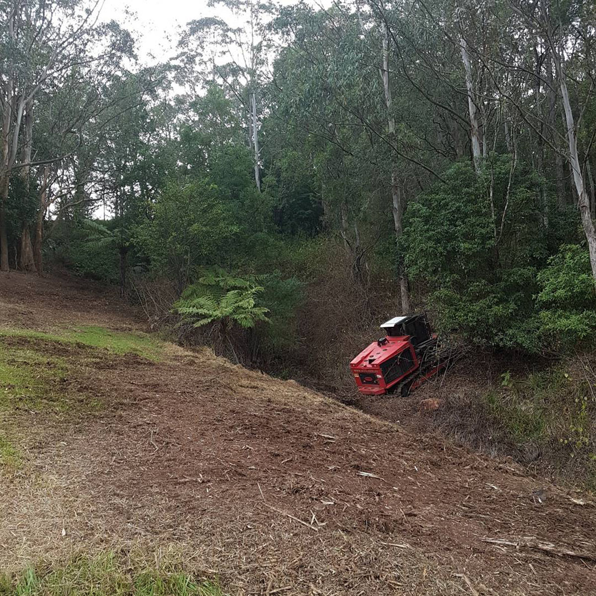 Sustainable Land Clearing Solutions Chipper on clearing site