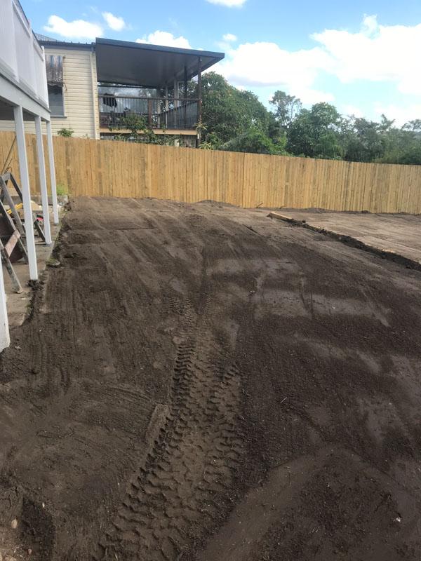 Back yard clearing