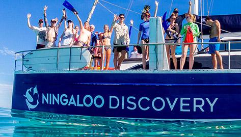 Ningaloo Discovery branding
