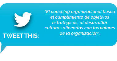 tweet - coaching organizacional