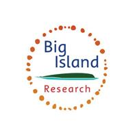 Big Island Research logo