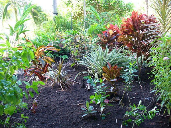 professional excavations plant hire and services organic mulches and garden soil