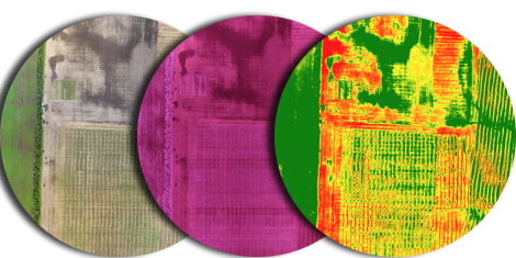 Using NDVI, we can help your agricultural business with expert drone surveys.