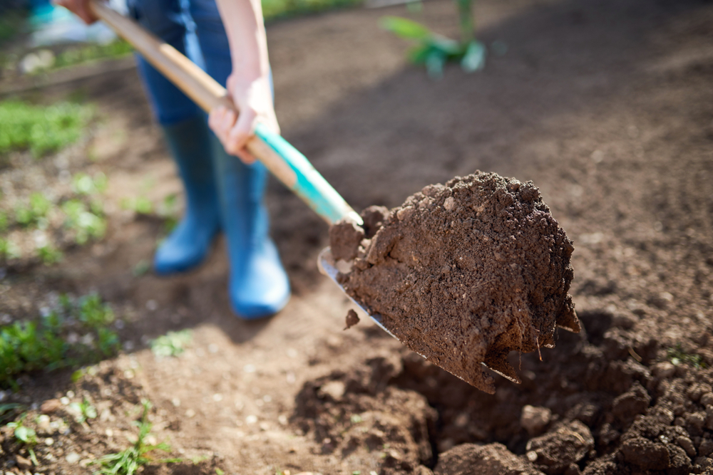 garden soil supply services